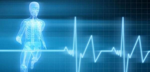 Zioła na nadciśnienie tętnicze
