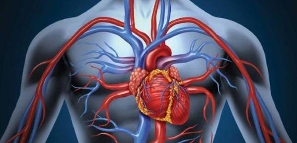 leki poprawiające krążenie krwii